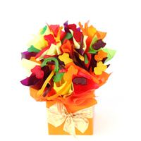 Jungle Jellies - Chocolate Hamper