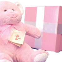 Congratulations Baby Box - Baby Hamper