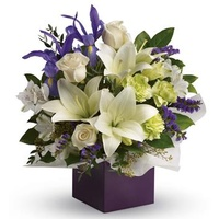 Graceful Beauty - Flower Arrangement