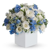 Celebrating Baby Boy - Flower Arrangement